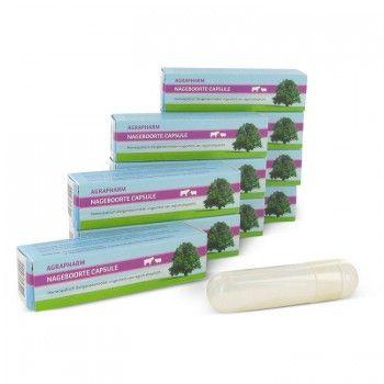 Homeopatische Nageboorte Capsules - 2000