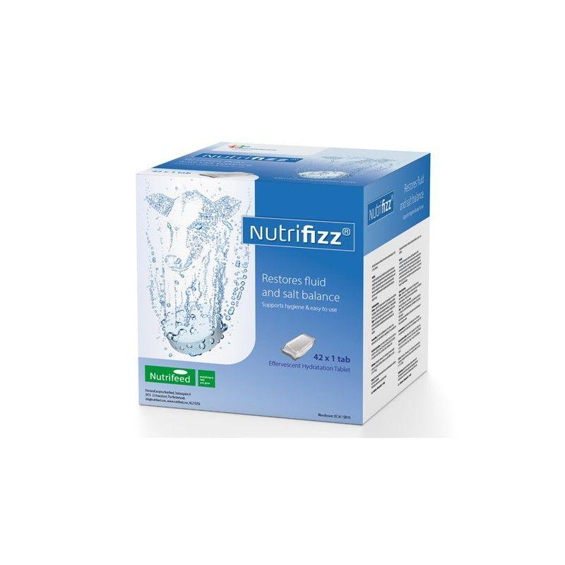Nutrifizz Bruistablet - 4352